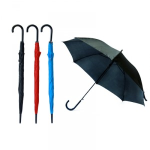 Prescient 24″ Auto Open Straight Umbrella