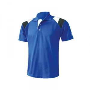 Polo T Shirt_2