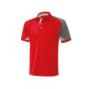 Polo T Shirt_4