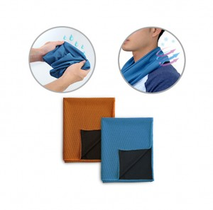 WSP1004 Ecoity Cooling Sport Towel